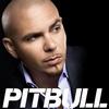 Pitbull перевод песен