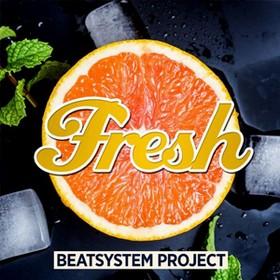 Beatsystem Project